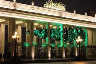 Елочка в парке Горького