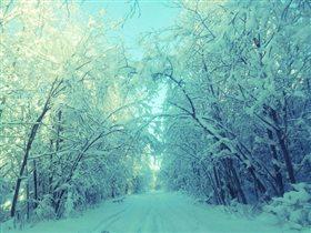Блиц:зима