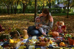 Краски Осени подтверждение