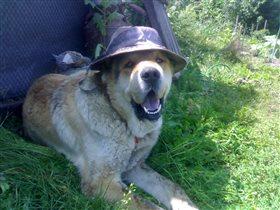 Шляпа украшает мужчину)))