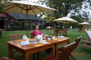 Отель на чайной плантации