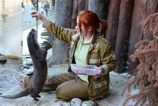 Новый цикл лекций в Московском зоопарке