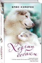 Увлекательный психологический роман «Хозяин собаки»