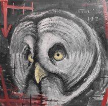 В Дарвинском музее откроется выставка «Птицы»