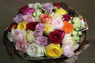 Редкие душистые садовые розы от «Фея розы». Сорта роз