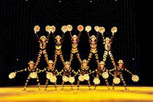 Китайские акробаты покажут в Москве номера, секреты которых передаются три тысячи лет