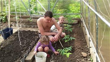 Растим помидорки всей семьёй!
