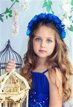 Голубоглазка.