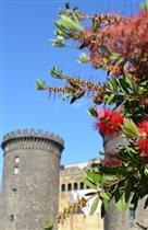 Неаполь в цветах