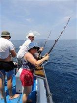 - Ну, держись, рыба большая и маленькая!