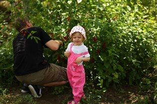 Папина ягодка (подтверждение)