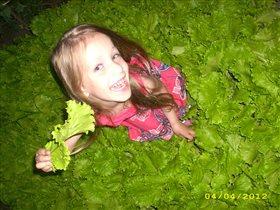 Люблю летнюю зелень!