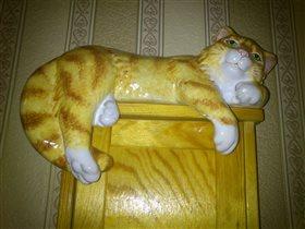 Котик-лежебока