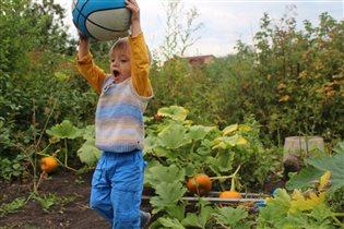 Игры во время сбора урожая