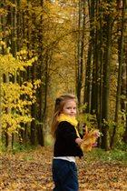Запах и краски Осени......
