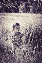 Фотоконкурс 'Краски осени'