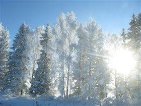 Зима за городом