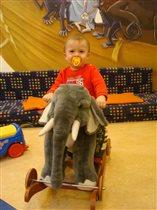 Фёдор на слоне