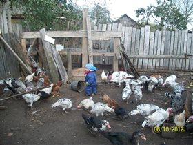 помогаем бабушке с хозяйством