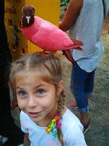 Люблю ручных птичек