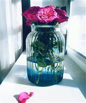 Розы в банке