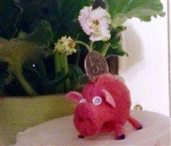 моя свинка