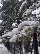 Настоящая зима....