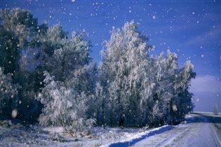 В снежных сумерках