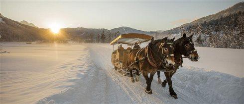 Австрийские Альпы: 5 занятий, кроме лыж