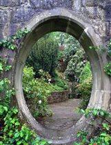 Сад в городе Уотерфорд (Ирландия).