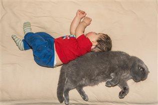 Сладкий сон - спина к спине.