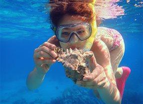 Сокровища синего моря