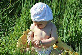 узнаём мир с травинки