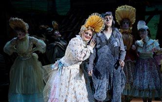 Опера «Гадкий утенок»