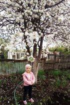 Весна прекрасна!
