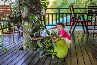 Вот это открытие, вот это фрукт!!!