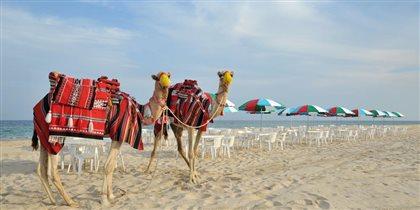 Катар: в четыре раза больше русских туристов, чем в прошлом году