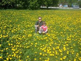 Ждем лето. Мои цветы жизни