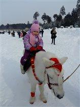 Впервые катаемся на пони