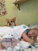 Сон под надежной охраной
