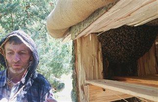 Отдых с детьми в Литве музей пчеловодства Друски