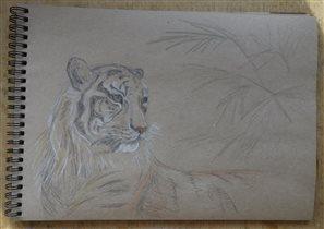 Тигр-тигр