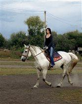 Столько драйва,как в лошадях,не встречала никогда.