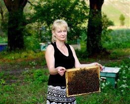 Очень люблю мёд и с пчёлами нахожу общий язык)))