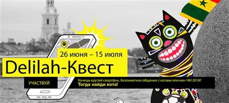 Квест по  Санкт-Петербургу «Моя любовь – футбол и кот»
