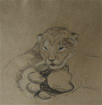 Новорожденный львенок