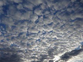 Ватные облака