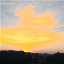 Всплеск солнца