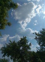 любовь в небе