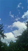 Облака в яблоневом саду